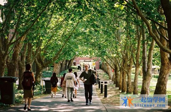 澳洲哪个大学的翻译专业好?