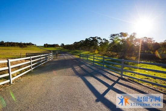 澳洲留学签证一般需要多长时间