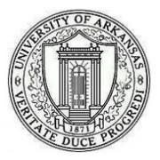 阿肯色大学-小石城校区