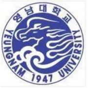 韩国岭南大学
