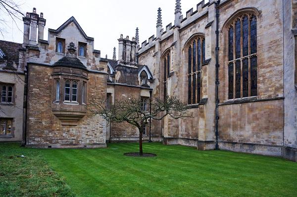 伦敦大学学院管理学,信息系统和数字化创新专业研究生申请条件及世界排名|学费介绍