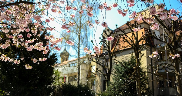 利兹贝克特大学入学条件及学费介绍、校园设施|就业前景