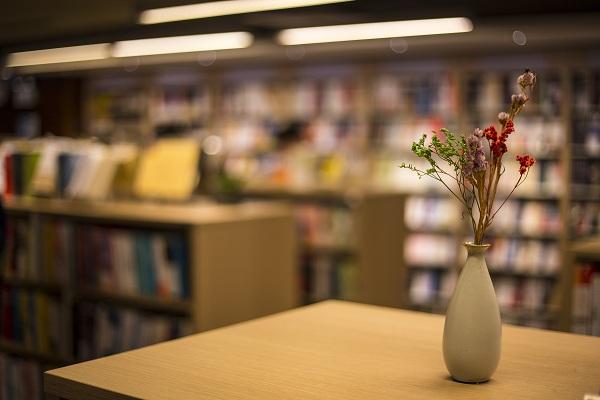 阳光海岸大学留学申请(本科和研究生硕士)招生手册简章