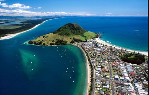新西兰惠灵顿理工学院好移民吗?