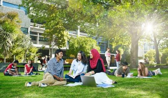 新西兰奥克兰大学公共政策硕士好申请吗