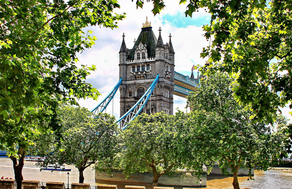 英国留学:苏塞克斯大学法律,政治和社会学院可申请的专业有哪些?
