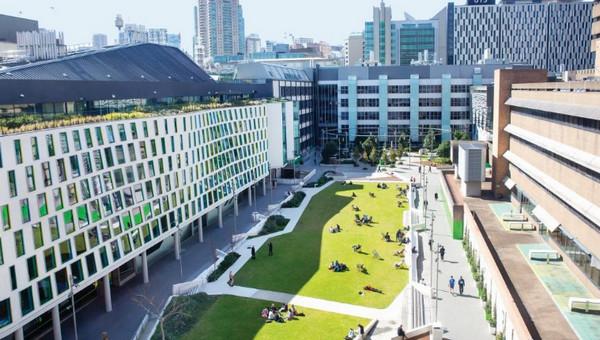 悉尼科技大学本科文凭课程申请指南