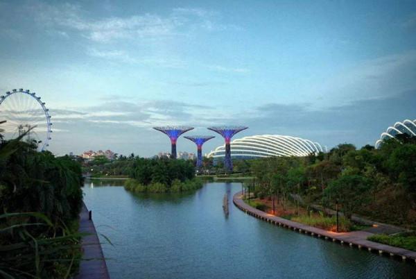 新加坡国立大学申请条件是什么(含热门专业推荐)