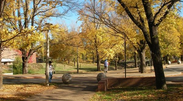澳大利亚国立大学商学院本科课程申请指南