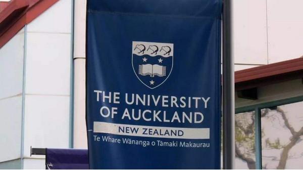 新西兰读本科能申请奖学金吗?