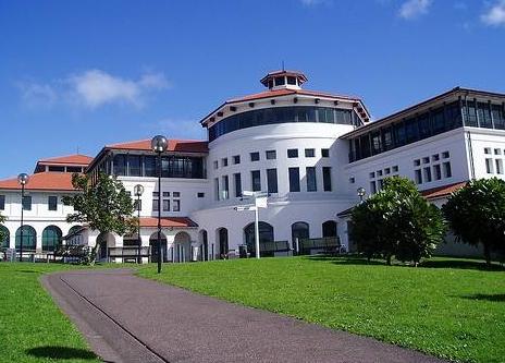 新西兰ICL商学院幼教课程录取条件是什么