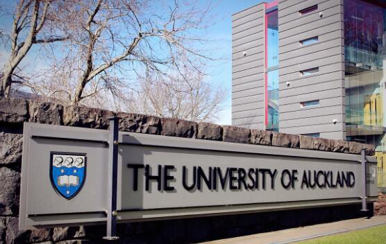 新西兰奥克兰大学地震工程师专业解读