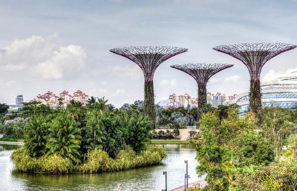 新加坡财经管理学院排名及优势介绍