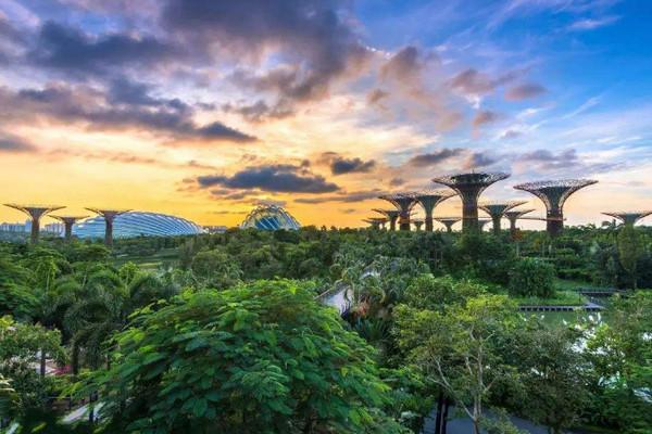 新加坡管理发展学院学费及生活费介绍