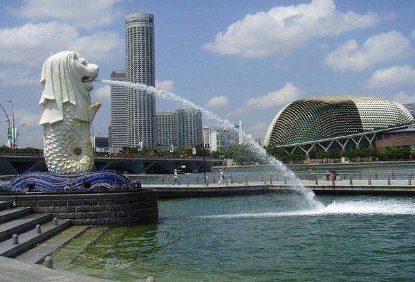在新加坡科技设计大学就读好不好