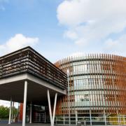 威登堡大学