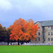加拿大皇家学院